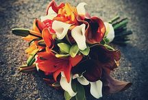 Bouquets & Boutonniere / by Tiffany Goode