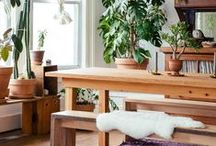 Kitchen & Dining / Interior decorating ideas for kitchens and dining rooms.