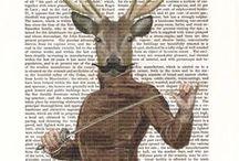 Deer ohh deer!
