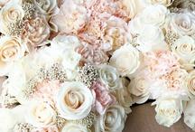 wedding. / by Peyton Dean