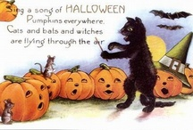 Halloween / by Alison Campbell