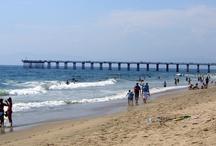 Favorite Places & Spaces / Favorite beaches