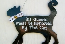 Favorite Pet Products / Creative and fun pet products I love.