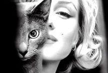 ART & ANIMALS // Sztuka i Zwierzęta / Famous Artists and Their Pets // Wielcy twórcy i ich zwierzęta