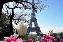 Paris II / by Susan Hardy
