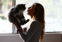Cat Lady Lyfe / by Madison Ferst