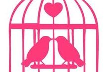 ♡ BIRDCAGES ♡ / ✨ NO PIN LIMIT ✨  / by ♡ Ginger Lindbloom ♡