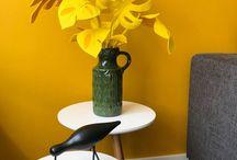 Kamerplanten / Kamerplanten van vilt. Eigen ontwerp van de Viltbloemist. In kleur of in natuurlijk groen. Info via daphne@viltbloemist.nl