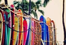 Swimming & Surfing
