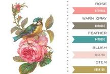 Color Muse / by Avalon Rose Design