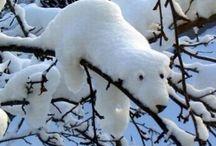 Winter & Snow Fun