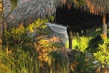 mariposas dormitorios / Mexican Modern meets Handmade Eco Jungle.  / by Karin Onsager-Birch