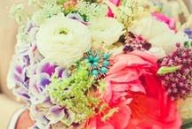 Wedding / by Shelbi Maule