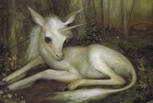 Faeries, Elves and Unicorns / I believe, I believe, I believe..... / by Kathy Trout-Revier