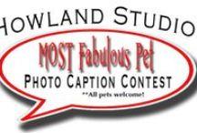 Howland Studios Contest