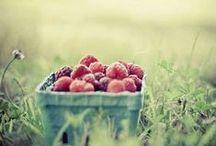 Berries - Red