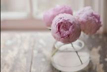 ~ Flowers In A Bottle / Jars ~ / by Jan Henderson