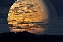 ~ Moonlight ~ / by Jan Henderson