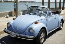 ~ Beetle Bug / VW Vans ~ / by Jan Henderson