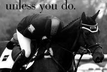 Horse riding life