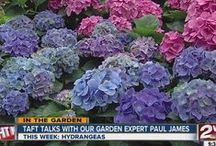 "In the Garden with Paul James and Taft Price / ""Gardner Guy"" Paul James and Taft Price discuss gardening do's and don'ts for Green Country. / by KJRH 2 Works for You"