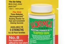Hormex Rooting Powder / Hormex Rooting Powders consistently produce stronger roots faster and more uniformly than any other rooting product.