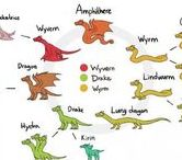Dragons / Dragons and their subspecies.  E.g.: Serpents, western dragons, etc.
