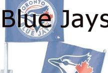 Blue Jays / The Toronto Blue Jays are a Canadian professional baseball team based in Toronto, Ontario. The Blue Jays are a member of the East division of the American League in Major League Baseball, and play their home games at Rogers Centre.