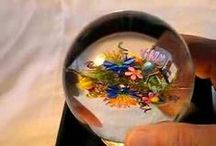 Inside the World of Glass Paperweights (videos) / The inside scoop of glass paperweights, their makers and collectors