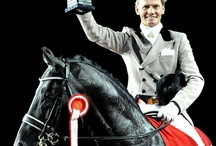 Run For the Roses - / For the beauty of horses and all things equestrian.