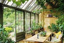 Conservatory / by Holly At Home