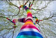 Mundo de cores