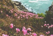   wanderlust   / the places i want to visit someday