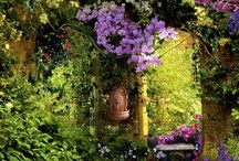 Gardenscapes / by Angela Mitchell