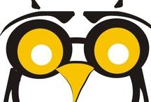 Owl Crazy
