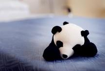 Portly Panda