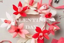 Valentine's Day / by A Beautiful Little Life