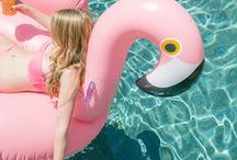 Flamingo Party Ideas / Flamingo pink inspired party ideas - Black, pink and white party supplies and party ideas
