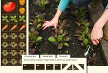 garden grow / by Jennifer Duncan