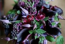 Blackberry Autumn Wedding