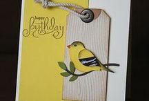card ideas / by Sallie Mount