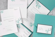 Trending for 2013- Mint & Pink