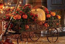 Autumn/Thanksgiving/Halloween / by Wallenda Williams