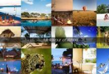 Honeymoons / Top African Destinations