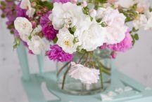 Bloom / by Anne Talbot Downey