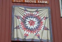 Painted barn Quilts / by Lynne Runkle-Adams