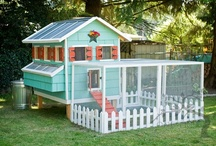Dream House! / by Ashley Mason