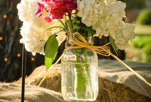 Have Jar will Travel / Glass has always appealed to me, and mason jars are simple yet sparkly and have so many uses! How could you go wrong?