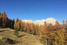 Cortina d'Ampezzo / Destination Weddings