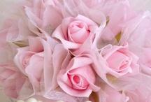 ❤ Pink ❤